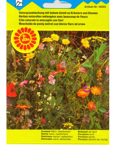 Naturgrasmischung mit hohem Anteil an Kräutern und Blumen