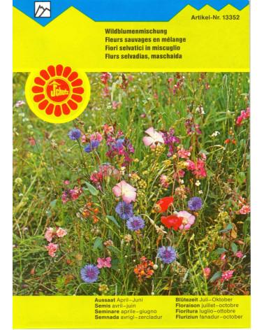 Wildblumenwiese (Trockenwiese)