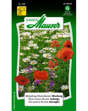 Wiesenblumenmischung