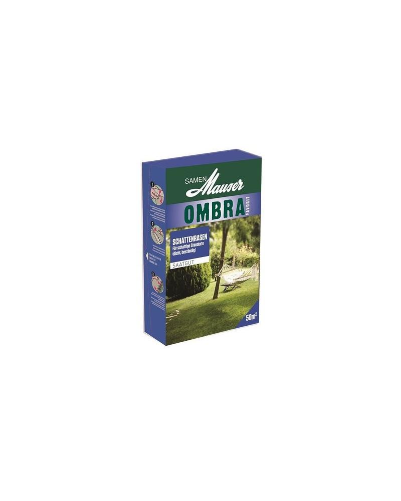 Rasen Ombra