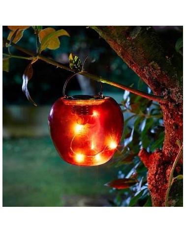 Funky Fruit Red Apple