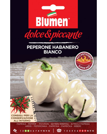 Paprika Habanero bianco