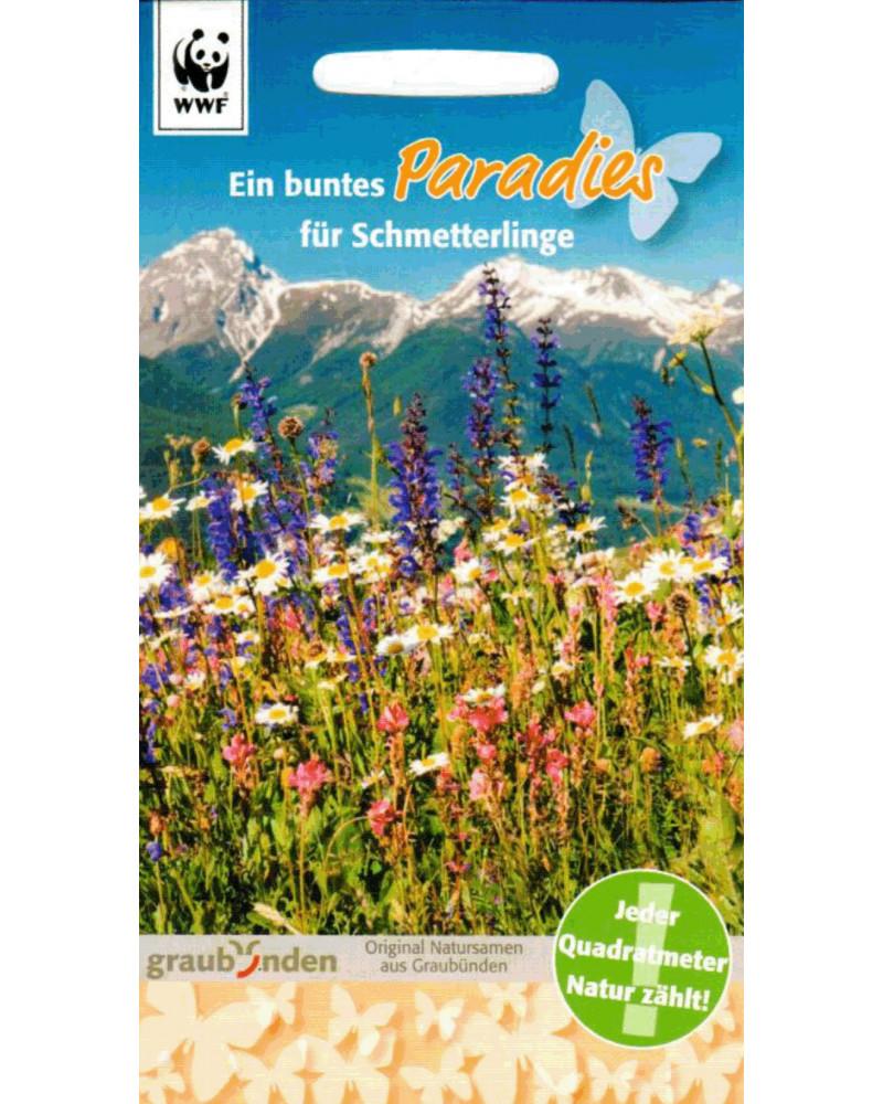 Trockenwiese: Paradies für Schmetterlinge