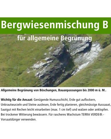 Bergwiesenmischung B