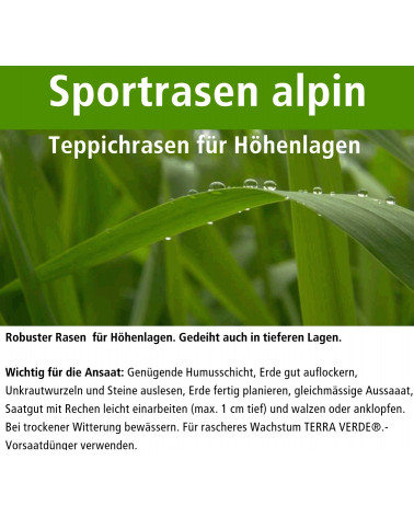 Sportrasen alpin