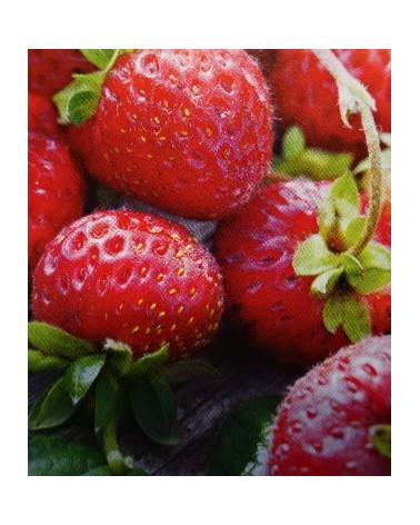 Hänge- und Klettererdbeere