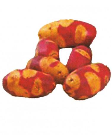Marzipan-Kartoffel Mayan Twilight
