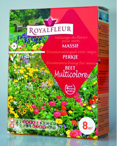 Blumenmischung Multicolore