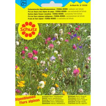Schutz Alpenblumenwiesen